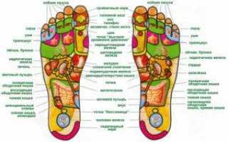 Как найти точку долголетия под коленом, её массаж и польза