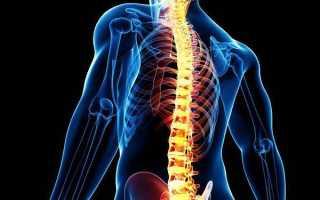 Спинальный шок: клиническая картина и симптоматика