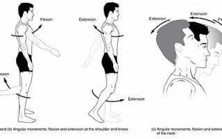 Разработка и укрепление голеностопного сустава после травмы: упражнения и лфк