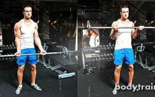 Как правильно совмещать группы мышц на тренировке