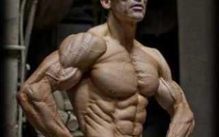 16 лучших советов по набору мышечной массы!
