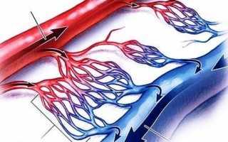 Уздг магистральнх артерий головы суть исследования, а также показания к прохождению
