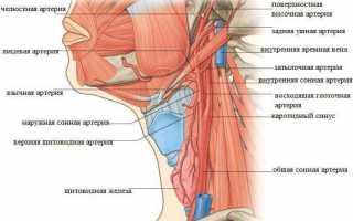Лечение остеохондроза по методу дикуля видео