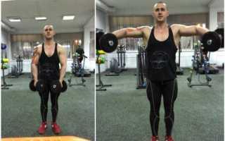 Задняя дельта плеча упражнения