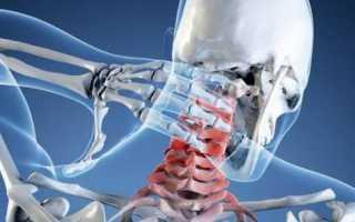 Лимфоузлы и мышцы шеи человека и их строение спереди и сзади