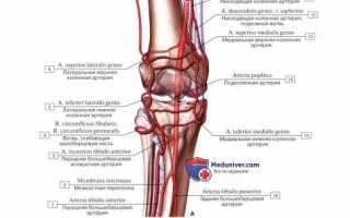 Капсула коленного сустава утолщена