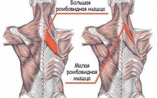 Как при помощи упражнений убрать боли в плечевом суставе