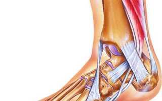 Почему может опухать и болеть голеностопный сустав, что делать