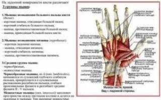 Почему не сгибаются большие пальцы на руках, методы диагностики, лечения, профилактики и возможные осложнения