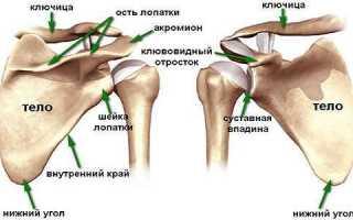 Симптомы и все методы лечения артроза плечевого сустава