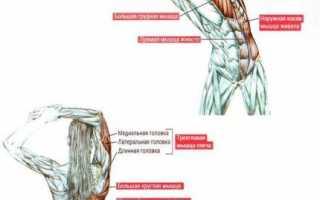 Можно ли заниматься спортом больным остеохондрозом?