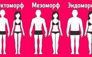 По каким параметрам можно определить тип телосложения мужчин