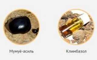 Противогрибковое масло стоп-актив: состав, эффективность и аптечные аналоги