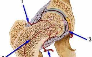 Мини-инвазивное эндопротезирование
