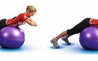 Рейтинг самых эффективных тренажеров для мышц спины с описанием и ценами