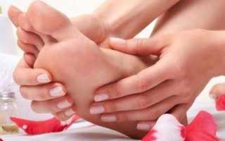 Мышца которая сгибает коленный сустав