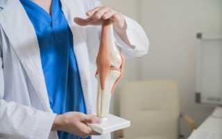 Коленный сустав строение анатомия видео