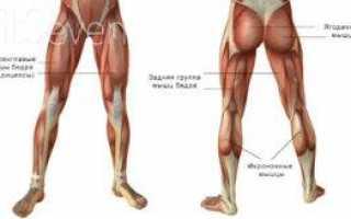Почему болят ноги спереди. болят ноги ниже колен