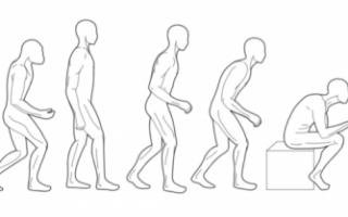 Как правильно держать спину и сохранить идеальную осанку?